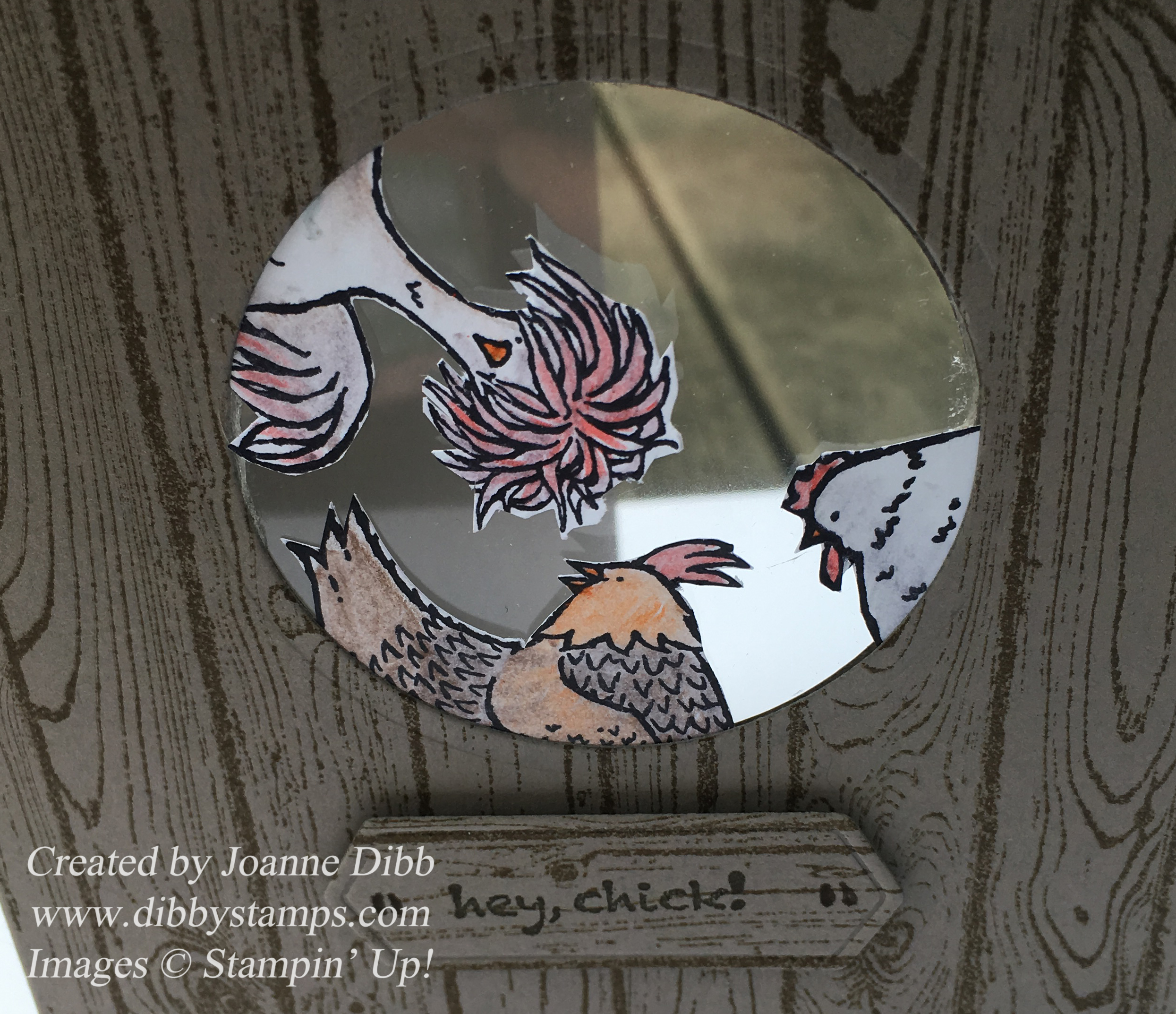 chickenshedcloseup