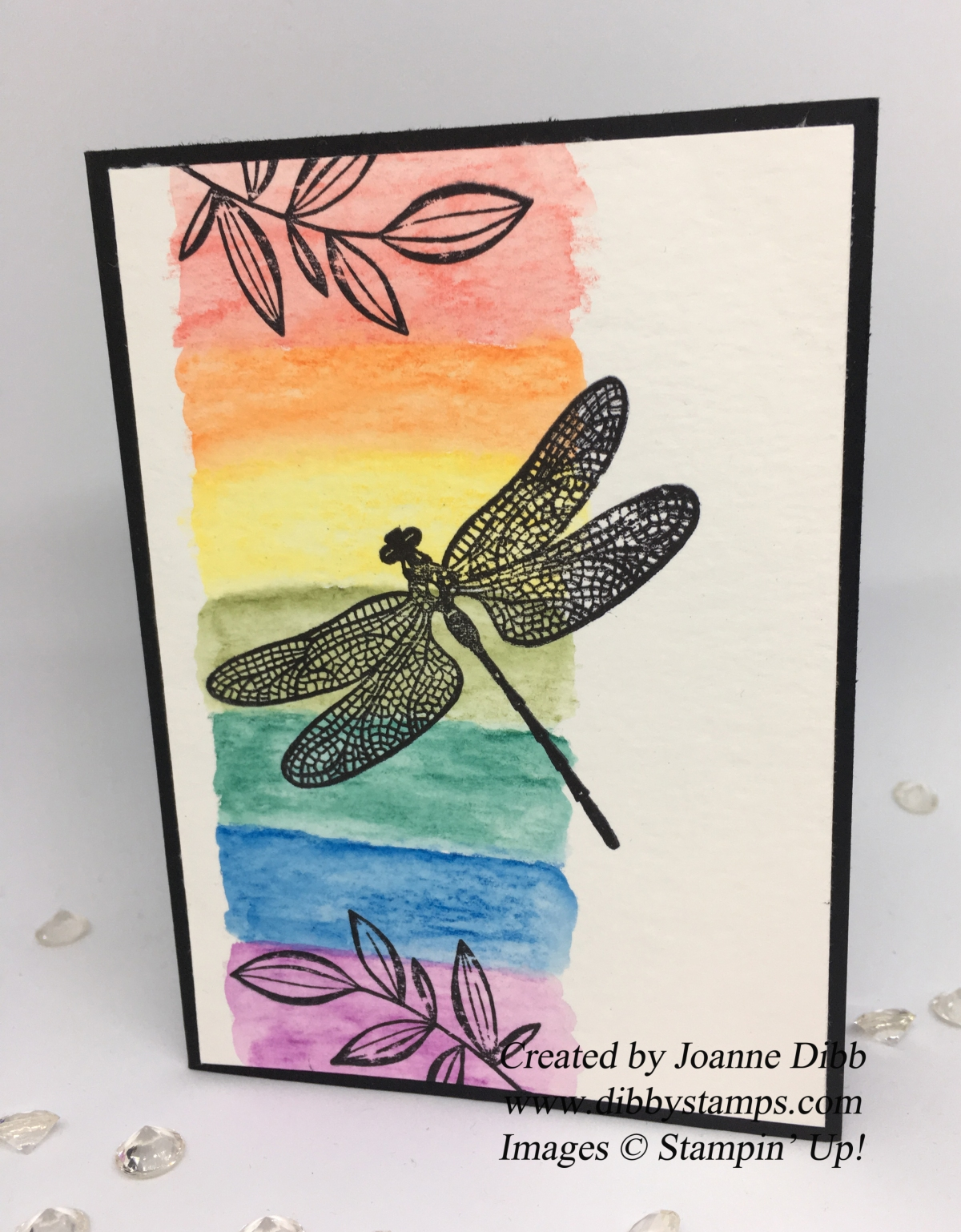 Rainbow Dragonfly Card