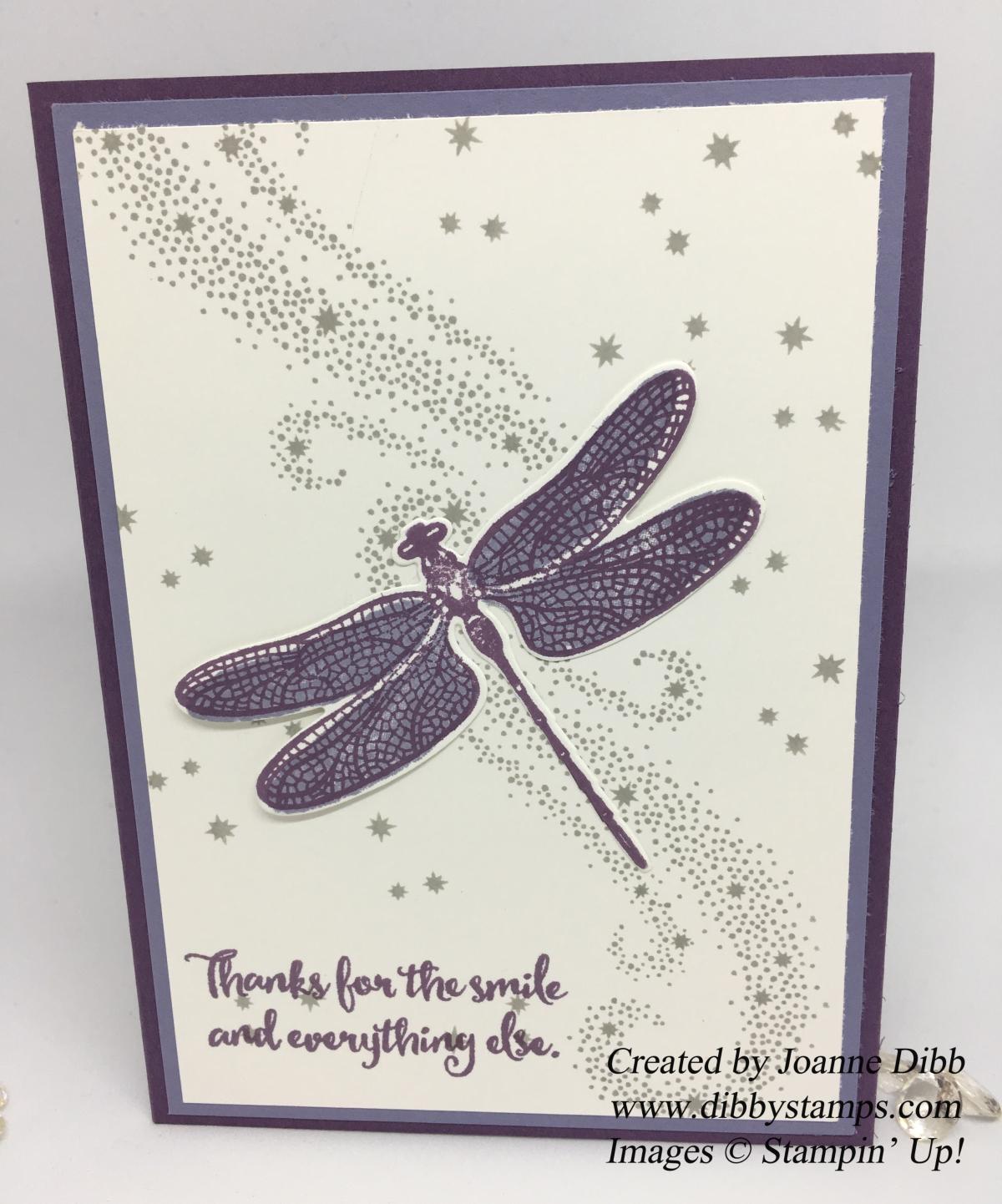Dragonfly Dreams Meets Star ofLight