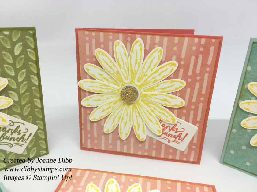 closeupdaisycards
