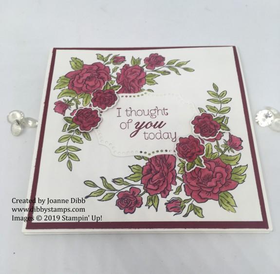 cherry cobbler climbing roses flat card