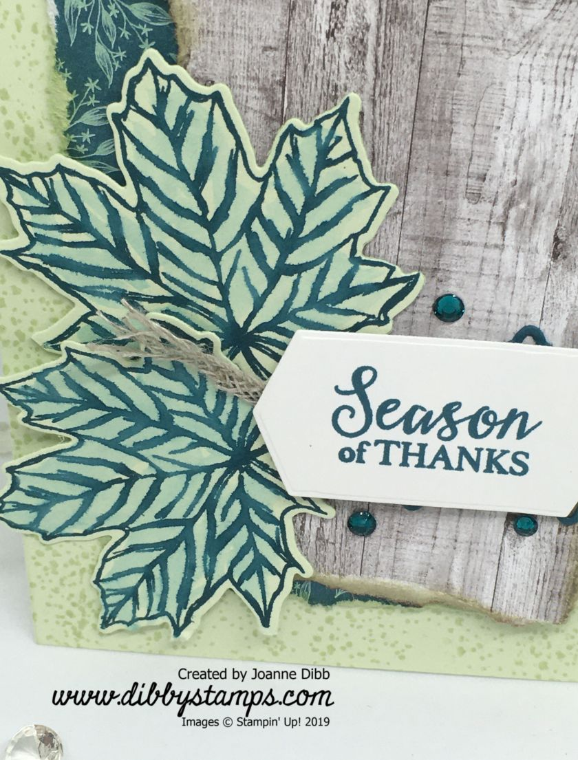 Happy Thanksgiving Card - close up
