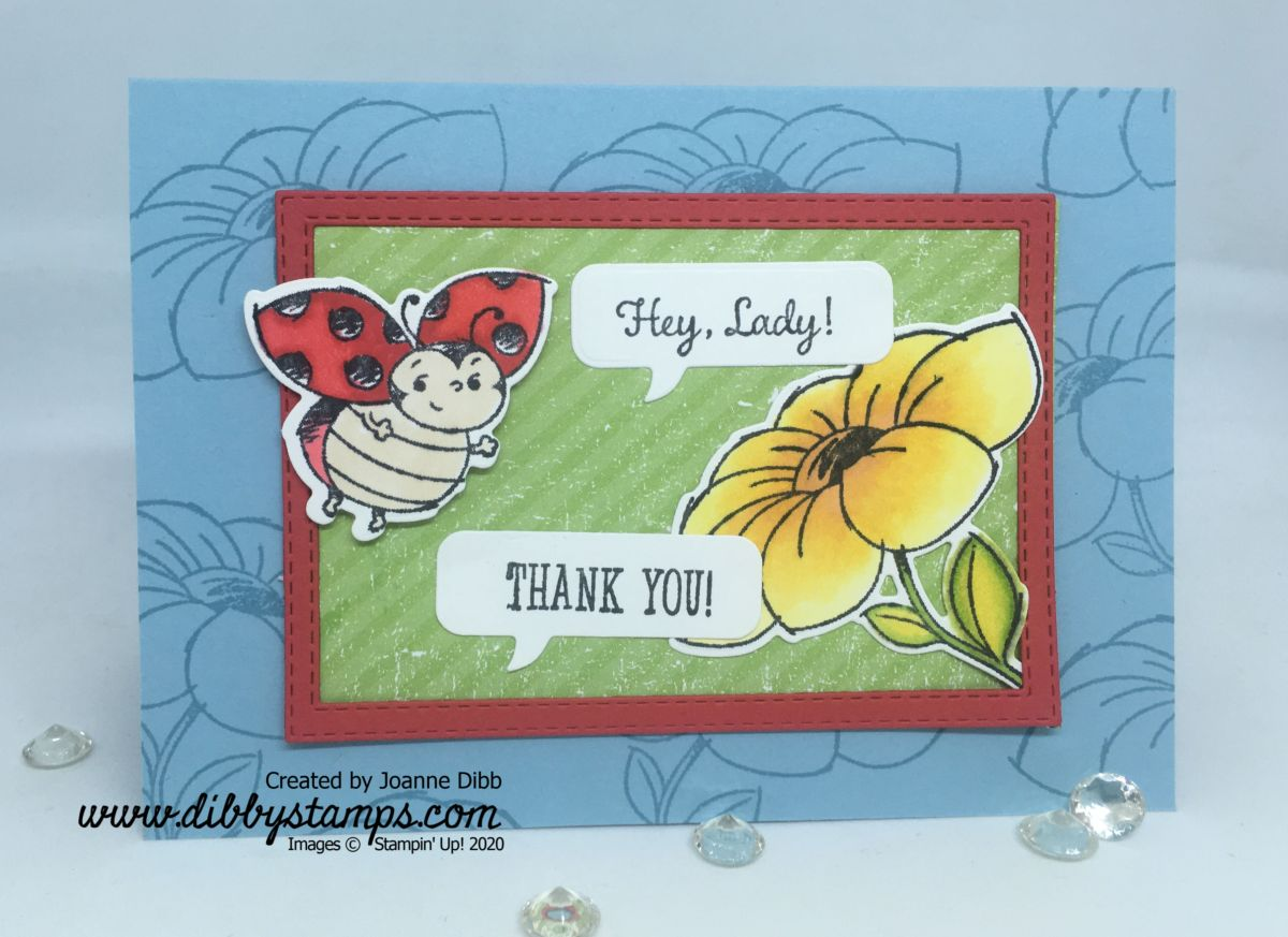 Hey Lady! Thank You Card
