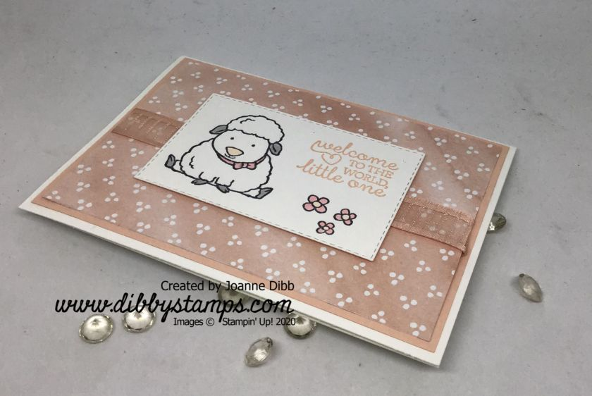 New Baby card with Welcome Easter (1)