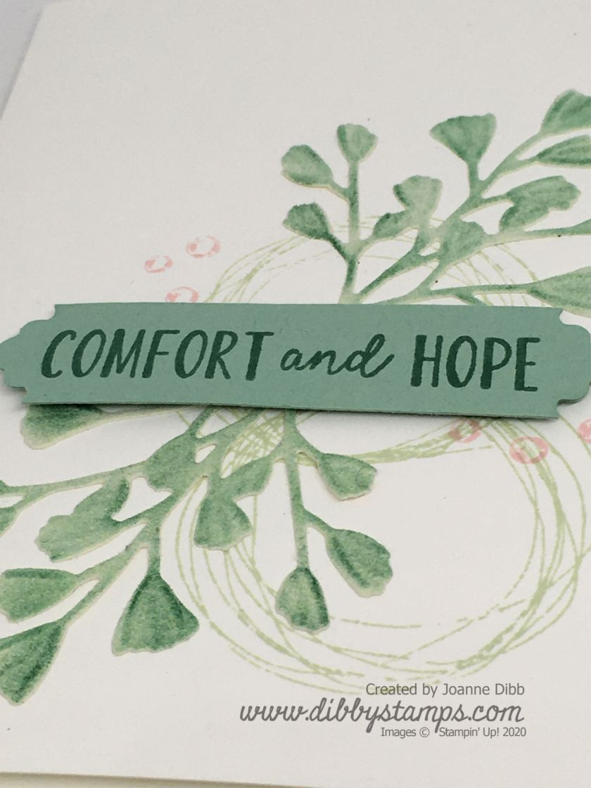 Comfort & Hope Close Up