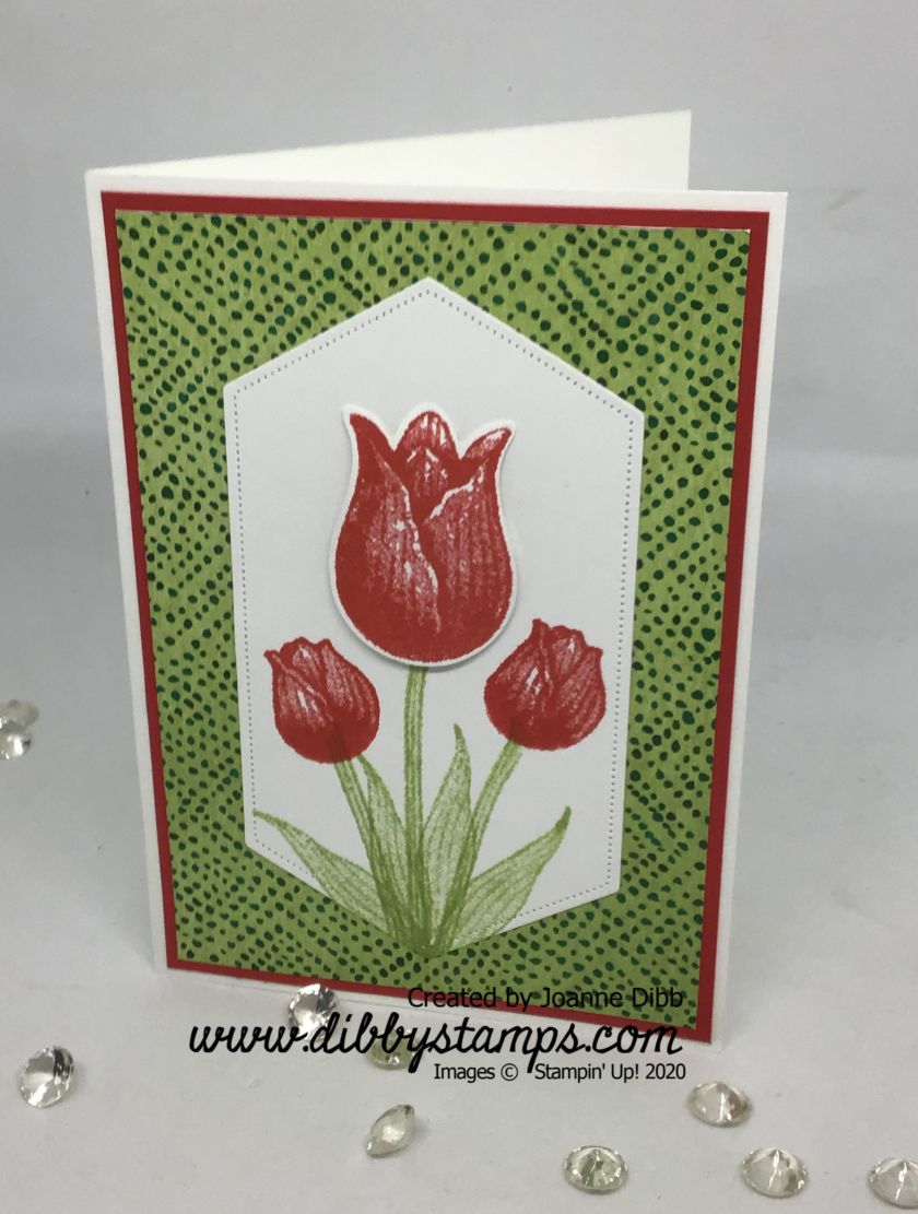 Timeless Tulips 1